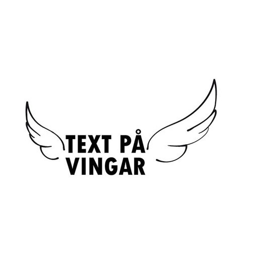 Text på vingar
